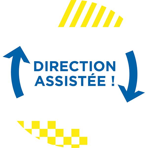 Direction assistée voitures sans permis